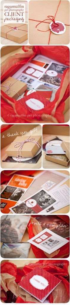 Ragamuffin Pet Photography packaging