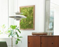 GREEN FRAME(L)W695 H940 D25mm ¥34,000 greeniche × soil/greeniche 代官山: