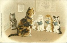 Postcard of kittens reading, posted 1903 Helena Maguire.