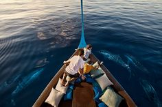 Four Seasons Kuda Huraa Resort Maldives - dolphin cruise Maldives Luxury Resorts, Maldives Resort, Maldives Travel, Best Resorts, Bora Bora, Places To Travel, Places To Visit, Honeymoon Destinations, Honeymoon Getaways
