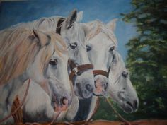 Horses, fours. oil on canvas