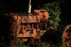 A vintage Farmall tractor being reclaimed by the very Earth it used to work. The light and shadows create a interesting scene around what is a common sight of a abandoned tractor.
