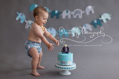 elephant themed cake smash, grey and blue cake smash, boys cakesmash ideas, natural light portrait studio © Dimery Photography 2013
