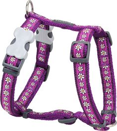 Red Dingo Designer Dog Harness, Large * Find out more about the great product at the image link.