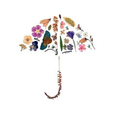 Pressed Flowers - Umbrella Best Picture For Dried Pressed Flowers For Your Ta. Pressed Flowers - U Dried And Pressed Flowers, Pressed Flower Art, Dried Flowers, Art Floral, How To Preserve Flowers, Leaf Art, Nature Crafts, Handmade Home, Flower Frame