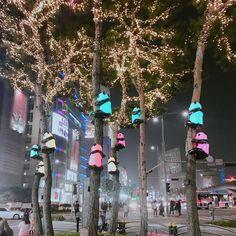 동대문 팬더 나무에 대한 이미지 검색결과