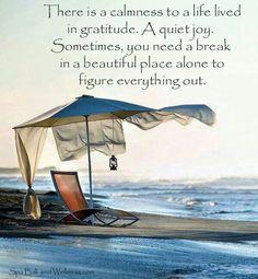 A calmness to life