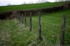 You've strung fence. | 20 Signs You Are From The Country