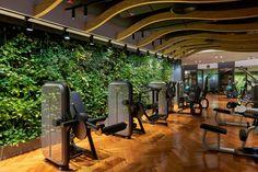 Biophilic space for Mumbai spa and wellness center Gym Interior, Interior Design, Gym Setup, Senses Spa, Hotel Gym, Spa Design, Wellness Center, Facade Design, Facade House