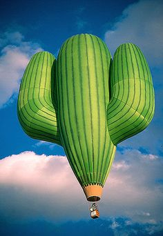 El Saguaro GrandeBrought to you by Cookies In Bloom and Hannah's Caramel Apples www.cookiesinbloom.com www.hannahscaramelapples.com
