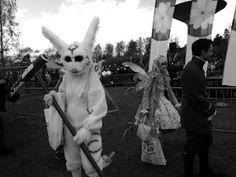 Travelling with camera obscura: Hanami 2015, Roihuvuori. Black and white