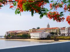 #panama Panamá promoverá turismo e inversiones en visita a Canadá - La Estrella de Panamá #orbispanama #kevelairamerica