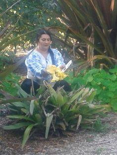 Vrăjitoarea Melisa, cea mai mediatizată din România | Vrajitoare Online Cel mai mare Portal de Vrajitoare din Romania Mai, Portal, America, Plants, Plant, Usa, Planets