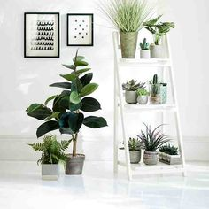 How to 'green' your home