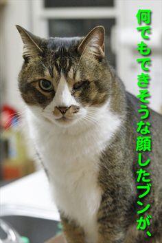自信喪失のワケは。 - http://iyaiyahajimeru.jp/cat/archives/53235