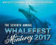 Saddle Mountain Ranch - Carmel, CA - Whalefest 2017