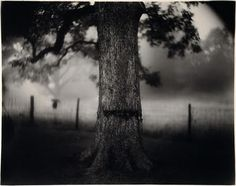 The National Gallery of Art's Sally Mann exhibit shows the South as you've never seen it - The Washington Post Marlene Dumas, National Gallery Of Art, Contemporary Photography, Landscape Photography, Street Photography, Photography Rules, Heart Photography, Photography Portraits, Contemporary Landscape