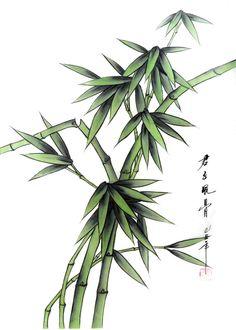 Bamboo,30cm x 40cm(12〃 x 16〃),2336136-z
