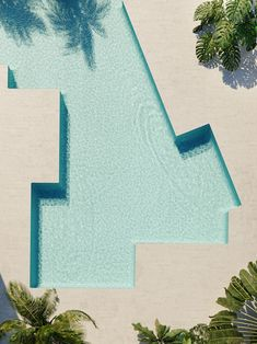 pool shape / isay weinfeld's shore club renovation in miami beach