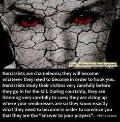Narcissists are Chameleons