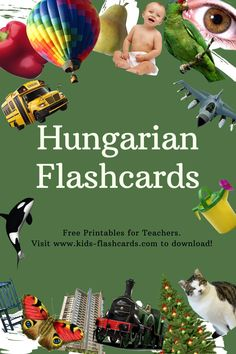 Free Printable Hungarian Flashcards for Kids (PDF files) Learn Farsi, English Grammar Rules, Persian Language, Flashcards For Kids, Baby Sign Language, Animal Cards, Animals For Kids, Free Printables, Activities For Kids