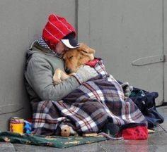a dog loves no matter what