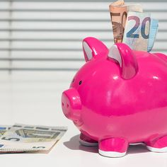 """You too could own a pig that goes """"KA-CHING"""" instead of """"OINK."""" Join my team and become a (COMPANY NAME) Consultant today :)"""