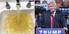 Cabinet of Monstrosities: Trump's Connection to the Flint Water Crisis