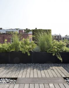 Brooklyn roof garden Julie Farris by Matthew WilliamsYou can find Roof gardens and more on our website.Brooklyn roof garden Julie Farris by Matthew Williams Rooftop Terrace Design, Terrace Garden, Rooftop Deck, Small Gardens, Outdoor Gardens, Roof Gardens, Small Garden Landscape Design, Garden Landscaping, Planters