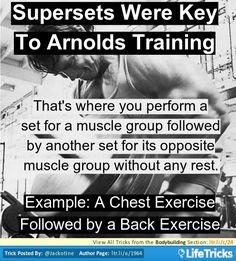 Bodybuilding - Key to Arnolds Bodybuilding Training