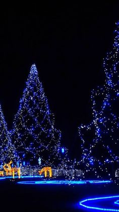 Christmas Tree wallpaper by - 88 - Free on ZEDGE™ Christmas Light Show, Christmas Scenes, Noel Christmas, Merry Christmas And Happy New Year, Winter Christmas, Christmas Lights, Christmas Greetings, Christmas Tree Wallpaper, Christmas Aesthetic
