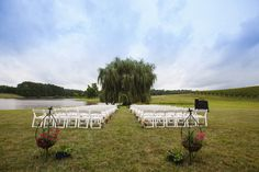 Wedding Ceremony on the Willow Lawn at Trump Winery Wedding | Charlottesville, VA | Alicia   Pete