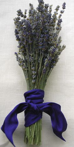 Fancy English Lavender Bouquet  Custom Flower Girl or small Bridesmaid Bouquet of English Lavender wrapped with a Ribbon Love Knot, a sweet bit of Ivory Lace OR Hemp Twine.  SHIPPING DETAILS This listing can ship in 3 weeks from date of order and will ship via USPS Mail and WILL INCLUDE shipping insurance.  BOUQUET DESCRIPTION This hand wrapped ribbon laden English Lavender bouquet smells so sweet. It is shown with an elegant bright blue French wired ribbon wrapped around the stems and tied…