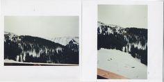snake skin . jacket   #Austria #ski #view #mountains #nature #landscape #fog #woods #trees #photography #analogue