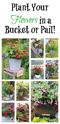 Lawn and Garden Tools Basics Buckets And Pails As Flower Containers In The Junk Garden Container Flowers, Flower Planters, Garden Planters, Flower Pots, Container Plants, Garden Junk, Garden Art, Garden Tools, Pot Jardin