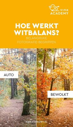 Fotografie tips voor beginners: Zorg dat je kloppende kleuren in de foto krijgt … Photography tips for beginners: Make sure you get the right colors in the photo with the right white balance. If the white balance is not set… Weiterlesen →
