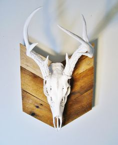 Deer Skull with Antlers on Chevron Plaque Painted Deer Skulls, Deer Skull Art, Cow Skull, Antler Crafts, Antler Art, Antler Mount, Skull Painting, Animal Skulls, Wood Shop Projects