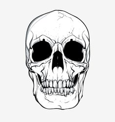 Skull Vector - Free Vector Site | Download Free Vector Art, Graphics Could I use this as a pattern somehow for skull cake?