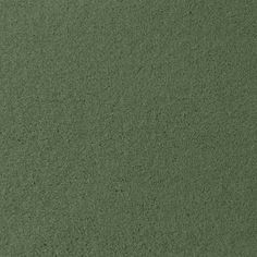 PENLEY ESTATES, PRAIRIE SAGE Plush Active Family™ Carpet - STAINMASTER®