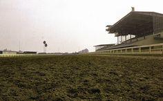 Los Alamitos Race Course, 1963 by Orange County Archives -- Los Alamitos, Calif.