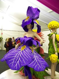Carnival of Flowers, Toowoomba, Queensland