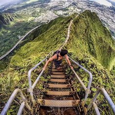 Do you dare?! Haiku Stairs, Kaneohe.  Follow our travel page @vjtravel - @jessechao  Don't forget to check out our @VJNY Collection ties @ www.vjnycollection.com ▃▃▃▃▃▃▃▃▃▃▃▃▃▃▃▃▃▃▃▃ Follow our Vittorio J Instagram network: @vittorioj - Main page @vjny - VJNY Collection by Vittorio J @vjexclusives - VJ Exclusives  @maxbyvj - Max by Vittorio J @carlosdangerties - Carlos Danger  @vittoriojties - VJ Black Label @vjshoes - Men's Shoe blog @vjhome - Interior Design blog @vjwine - Wine and Spirits…