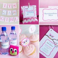 Cute Baby Owl Invitations and Decorations for a Girl Baby shower