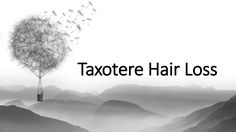 Craig Swapp & Associates can help those affected by permanent hair loss from the use of the chemotherapy drug Taxotere. Contact us today.