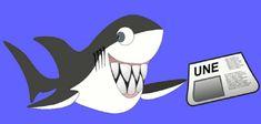 Jeu de 6 à 12 ans : les requins