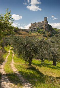 Craco and olive trees - Craco (Matera), Basilicata, Italy...