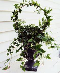 How to make a topiary with a coat hanger.  Cheap and easy had a conversation and they came up with this :)