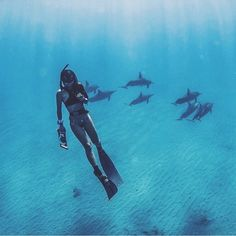 Ocean Spirit :: Ride the Waves :: Salt Water :: Cures Everything :: Free your Wild :: Ocean Photography Pinterest :: @lovestonedco