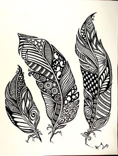 drawing zentangle feather