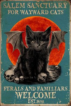 Black cat salem sanctuary for wayward cats ferals and familiars welcome poster Retro Halloween, Theme Halloween, Halloween Prints, Halloween Pictures, Halloween Signs, Halloween Cat, Holidays Halloween, Happy Halloween, Vintage Halloween Posters